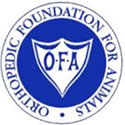 OFA: Orthopedic Foundation for Animals